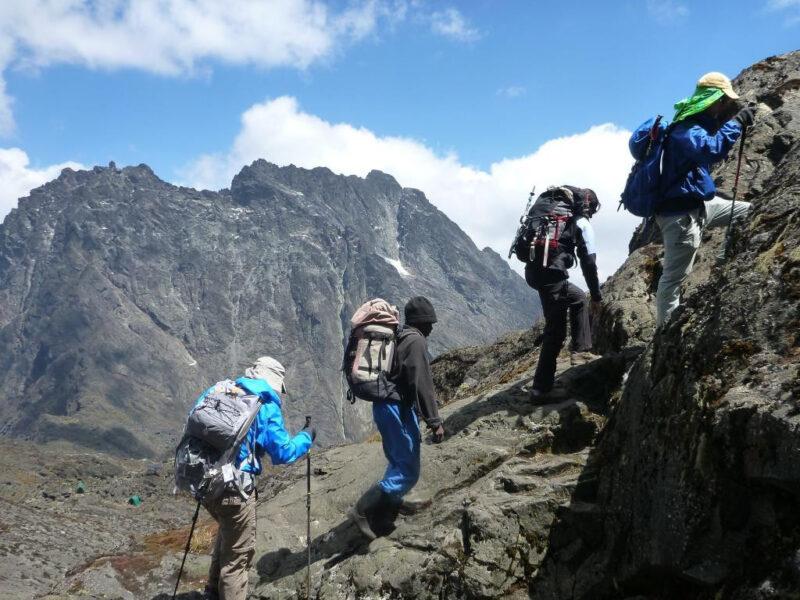Mount Rwenzori Hiking Safari